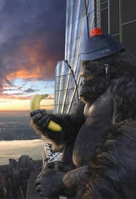 KingKong with bananas - hearing the titlesong from jungle-book :o)